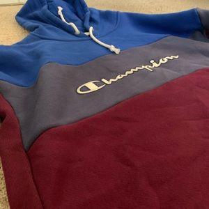 Champion Purple, blue, dark blue crop hoodie